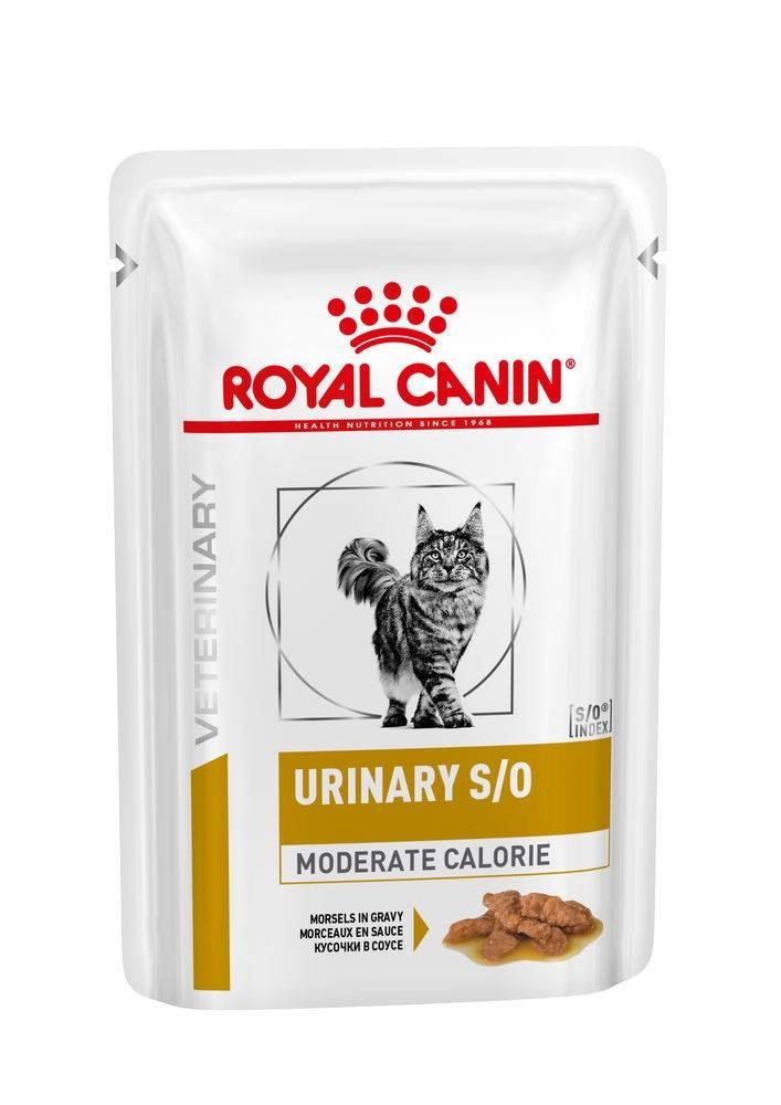 ROYAL CANIN URINARY S/O MODERATE CALORIE wet in gravy – лечебный влажный корм, кусочки в соусе, для взрослых котов при заболеваниях нижних мочевыводящих путей