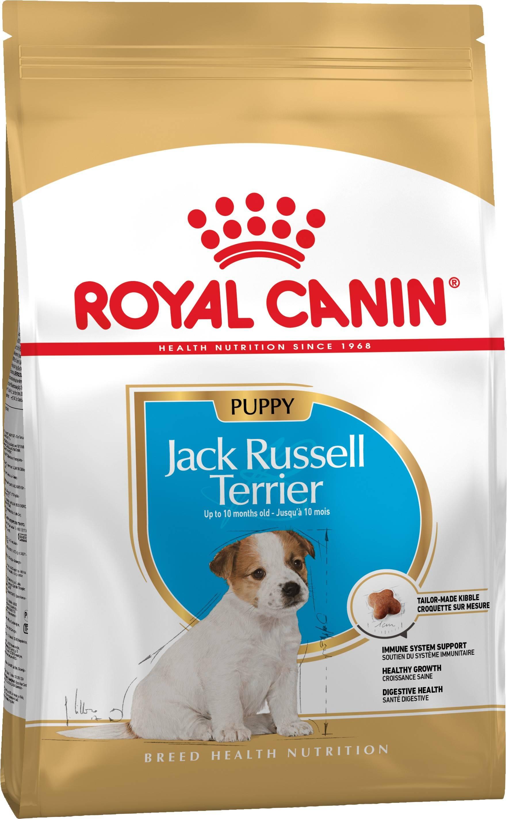 ROYAL CANIN JACK RUSSEL TERRIER PUPPY – сухий корм для цуценят породи джек-рассел-тер'єр