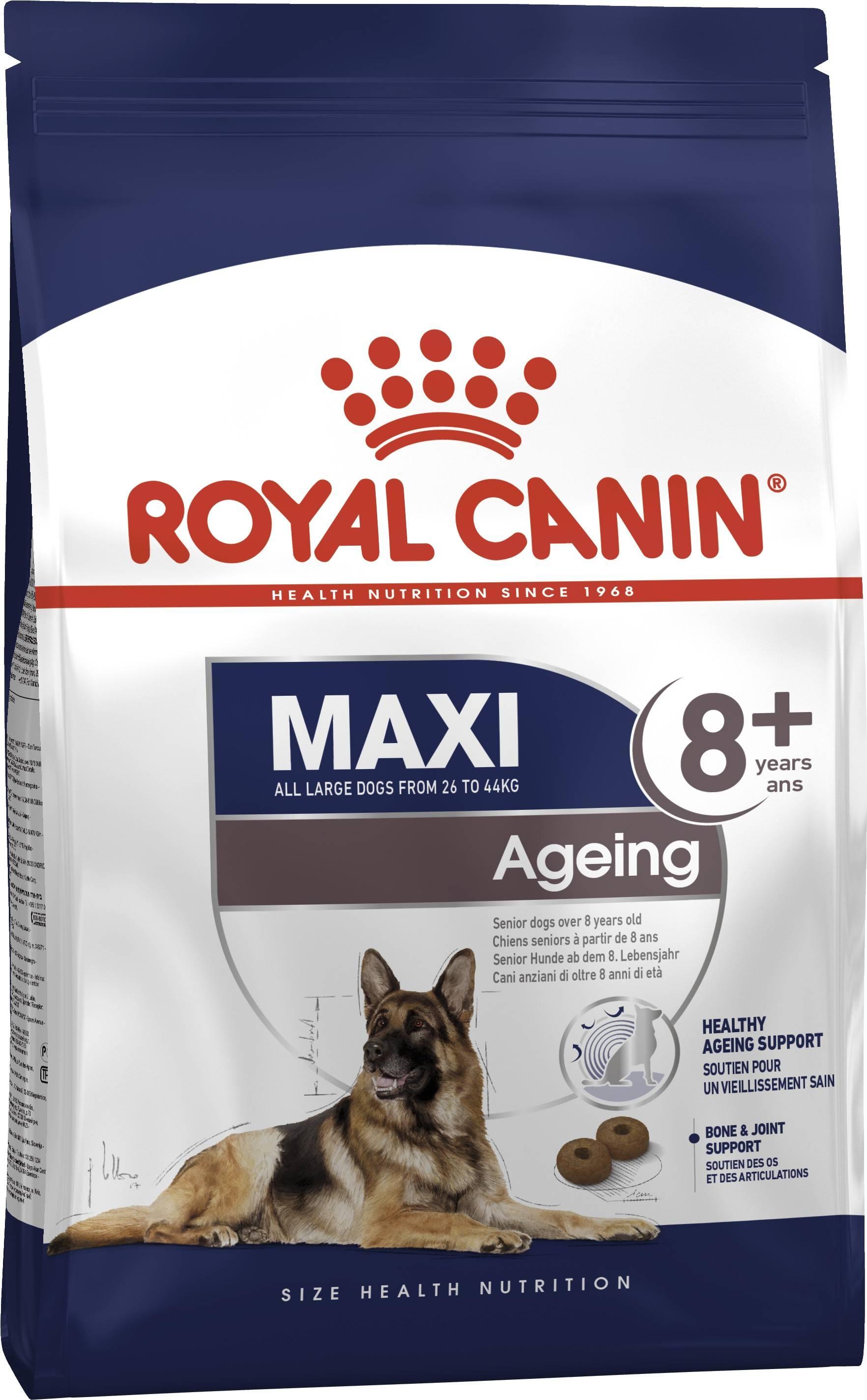 ROYAL CANIN MAXI AGEING 8+ – сухой корм для собак больших пород старше 8 лет