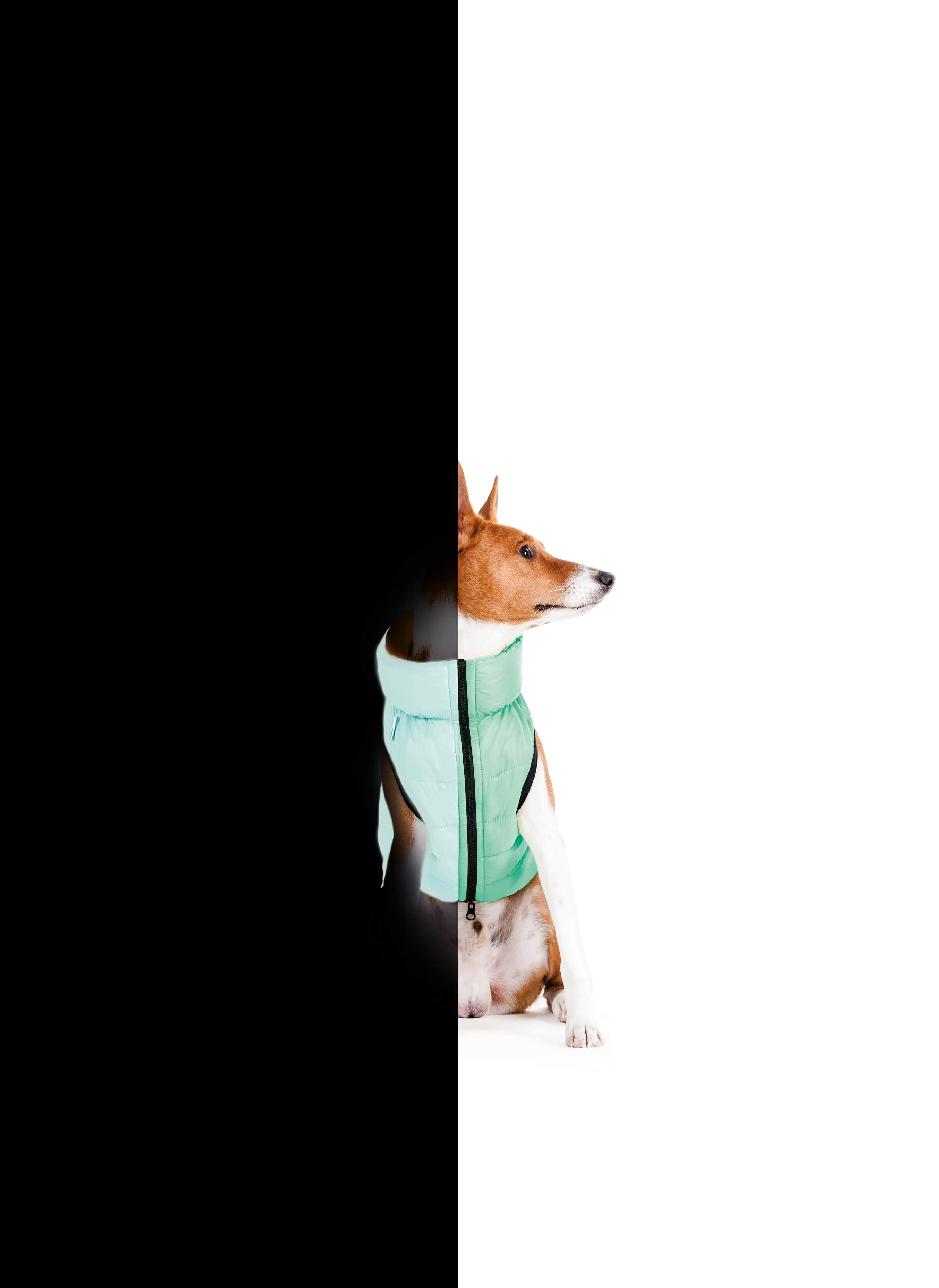 AiryVest Lumi куртка для собак, що світиться в темряві, М 40