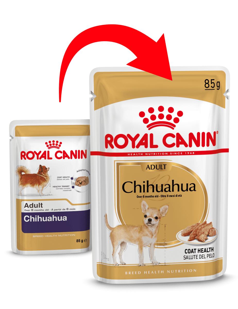 ROYAL CANIN CHIHUAHUA ADULT – вологий корм для дорослих собак породи чихуахуа