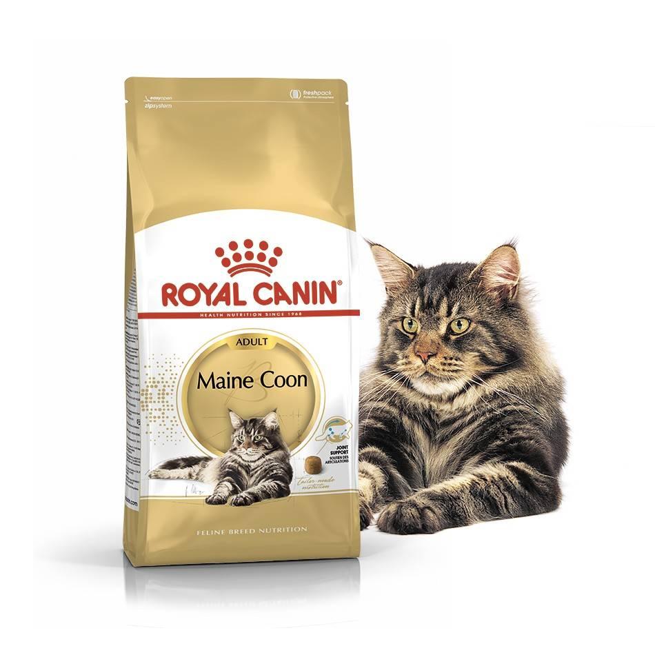 ROYAL CANIN MAINE COON ADULT – сухой корм для взрослых котов породы мейн-кун