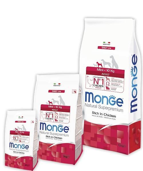 MONGE MINI ADULT – сухий корм для дорослих собак дрібних порід