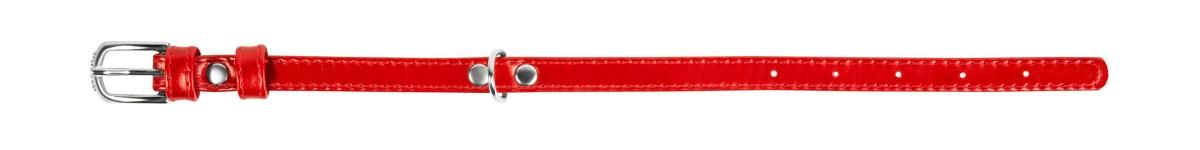 COLLAR Brilliance нашийник для цуценят і собак дрібних порід, 12 мм/21-29 см