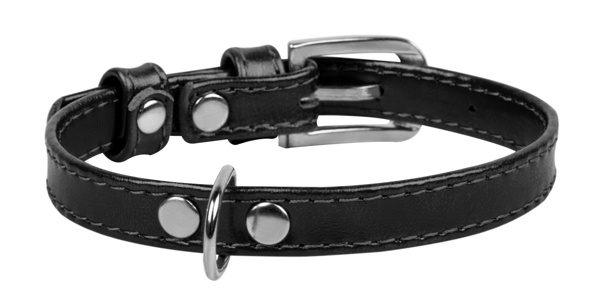 COLLAR Brilliance ошейник для щенков и собак мелких пород, 12 мм/21-29 см