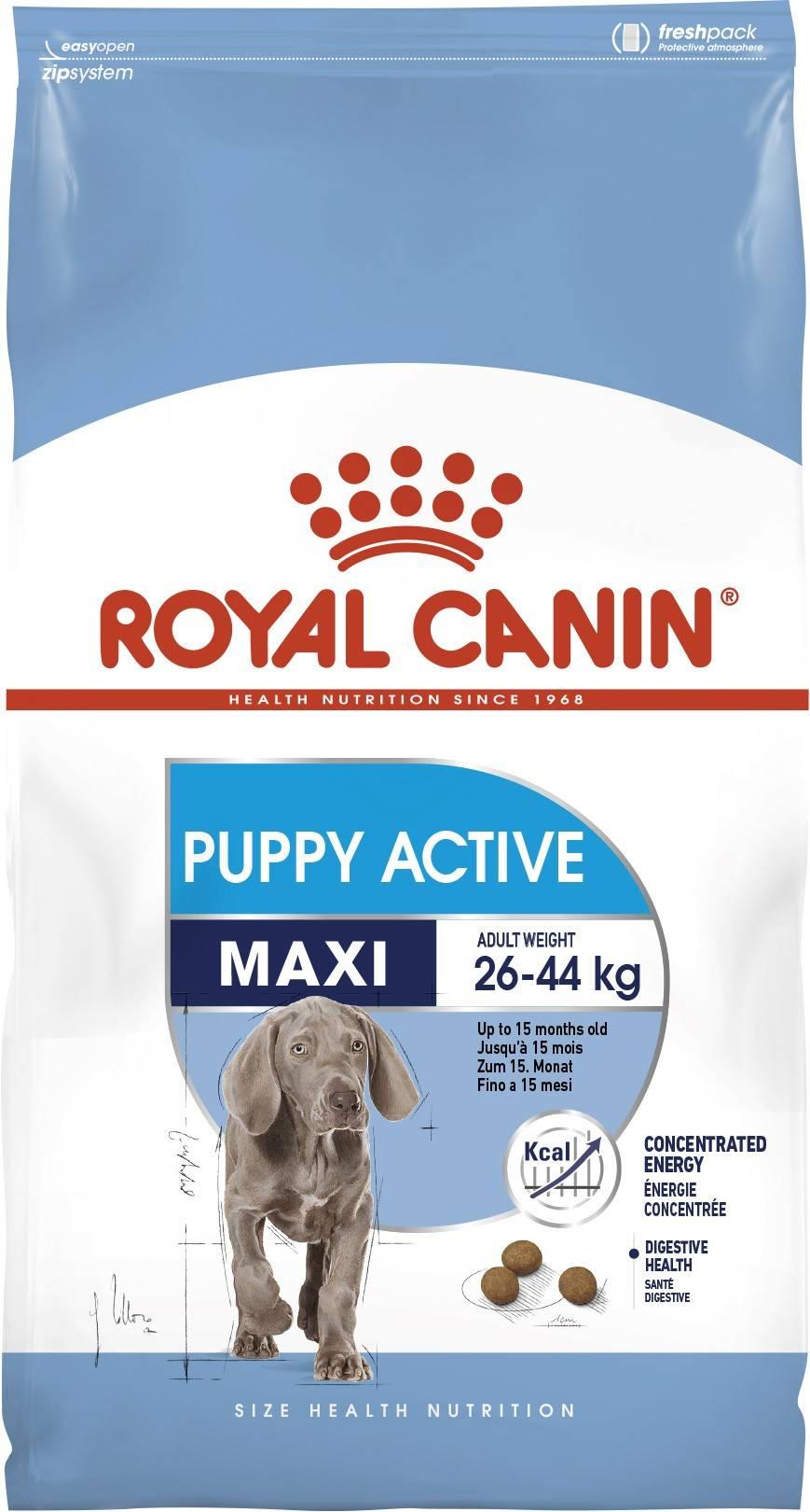 ROYAL CANIN MAXI PUPPY ACTIVE – сухий корм для цуценят великих порід з високими енергетичними потребами
