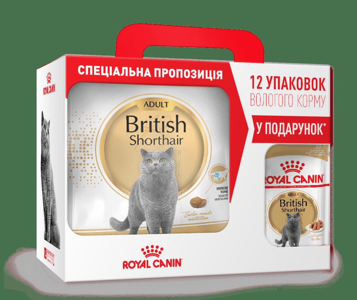 ROYAL CANIN BRITISH SHORTHAIR ADULT – сухой корм для взрослых котов породы британская короткошерстная