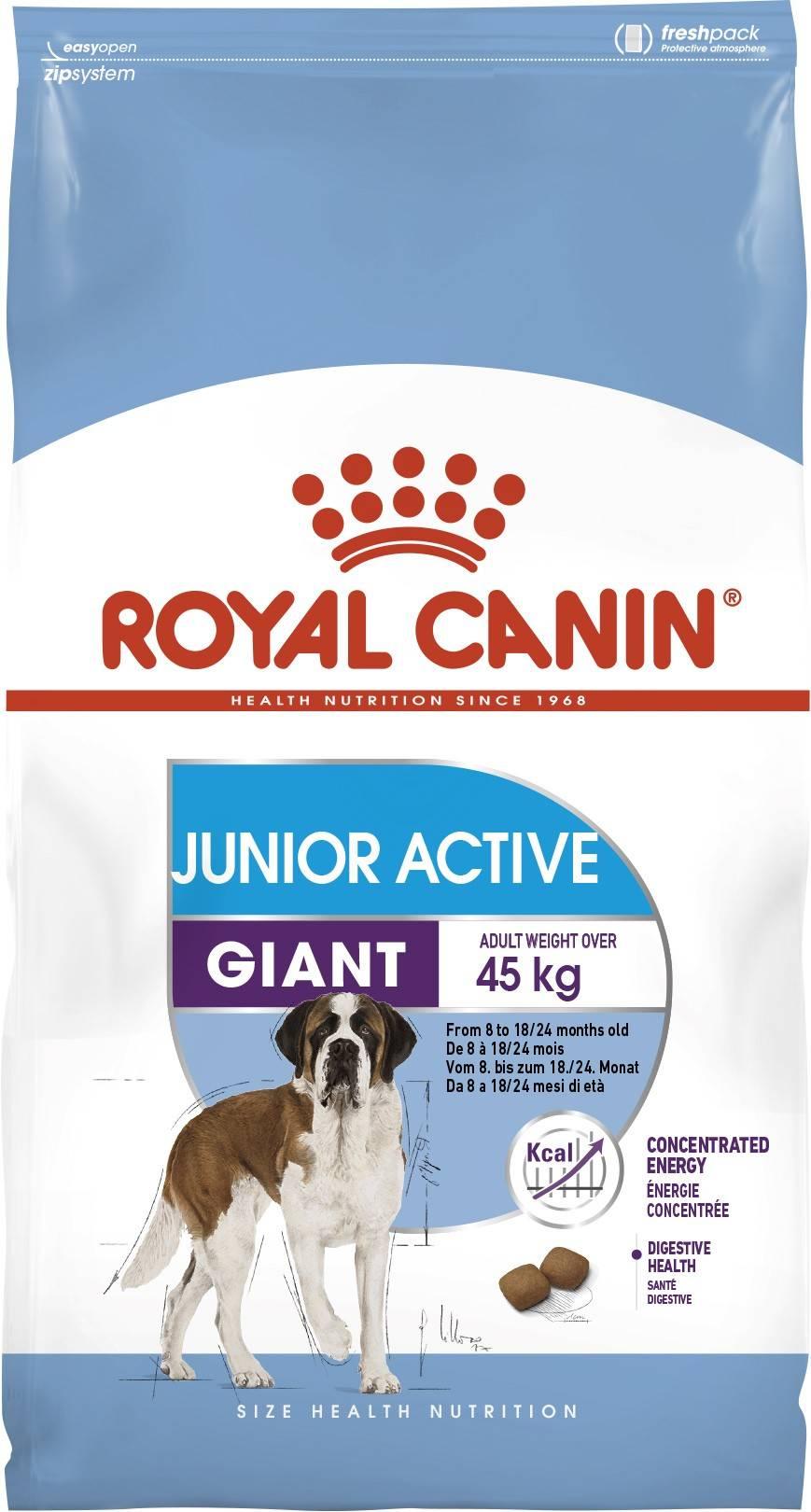 ROYAL CANIN GIANT JUNIOR ACTIVE – сухий корм для цуценят гігантських порід з високими енергетичними потребами