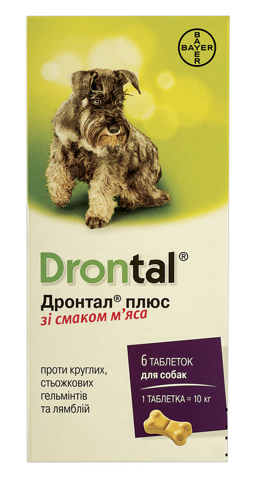 Drontal plus – таблетки против гельминтов для собак