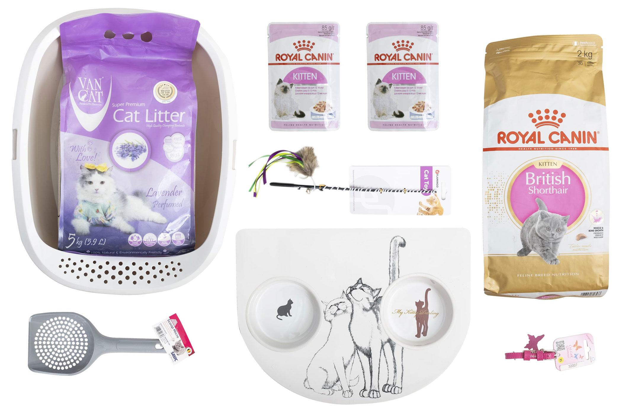 Royal Canin British Kitten – Стартовий набір для кошенят британської породи