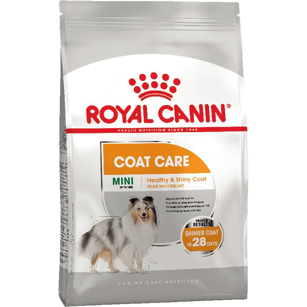 ROYAL CANIN COAT CARE MINI – сухой корм для собак малых пород с тусклой и жесткой шерстью