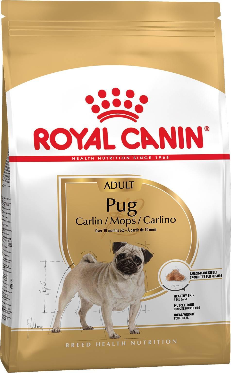 ROYAL CANIN PUG ADULT – сухой корм для взрослых собак породы мопс