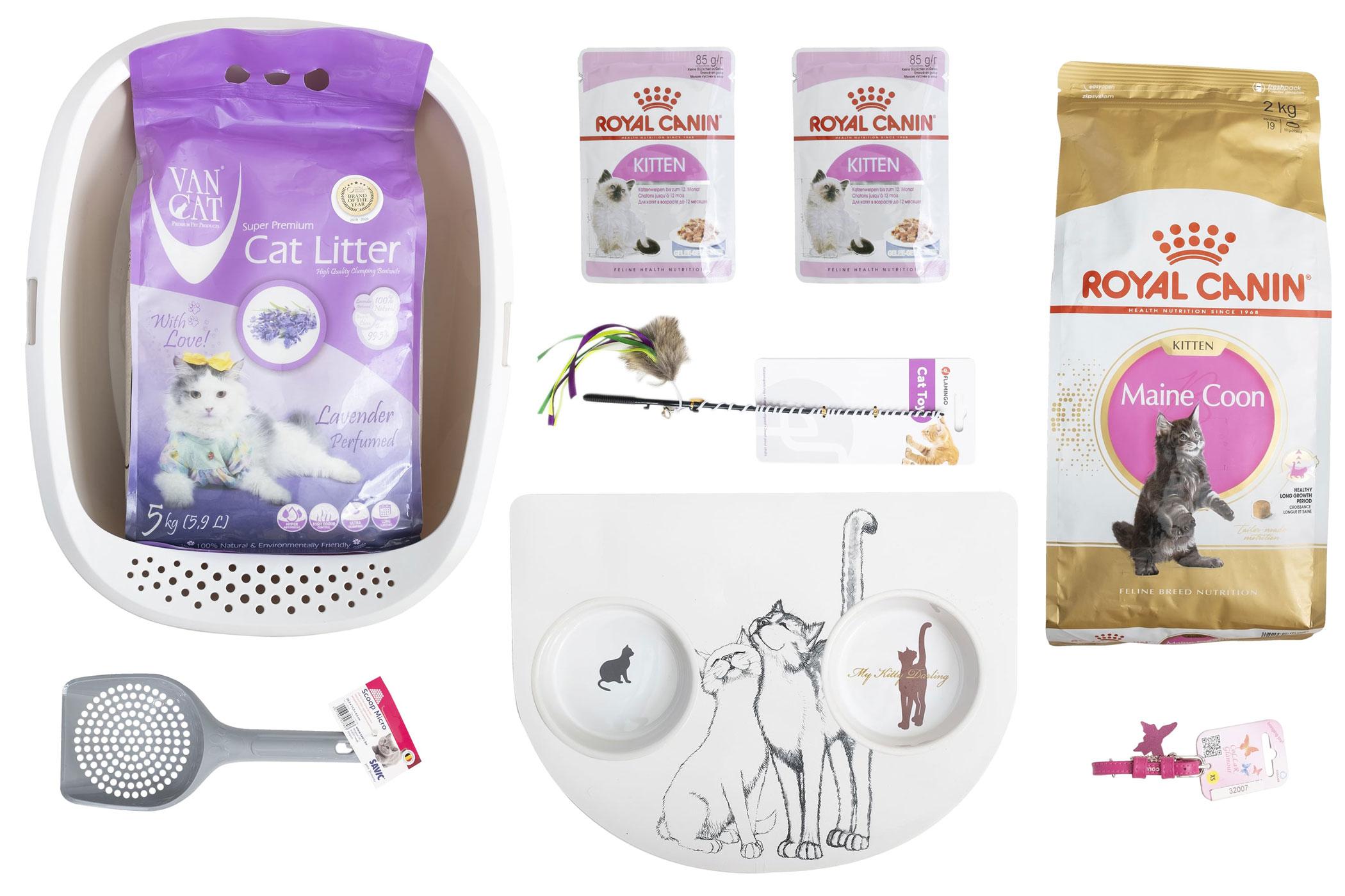 Royal Canin Maine Coon Kitten – Стартовий набір для кошенят породи мейн-кун