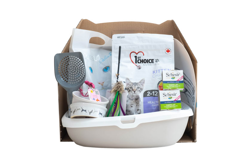 1st Choice Kitten – Стартовый набор для котят