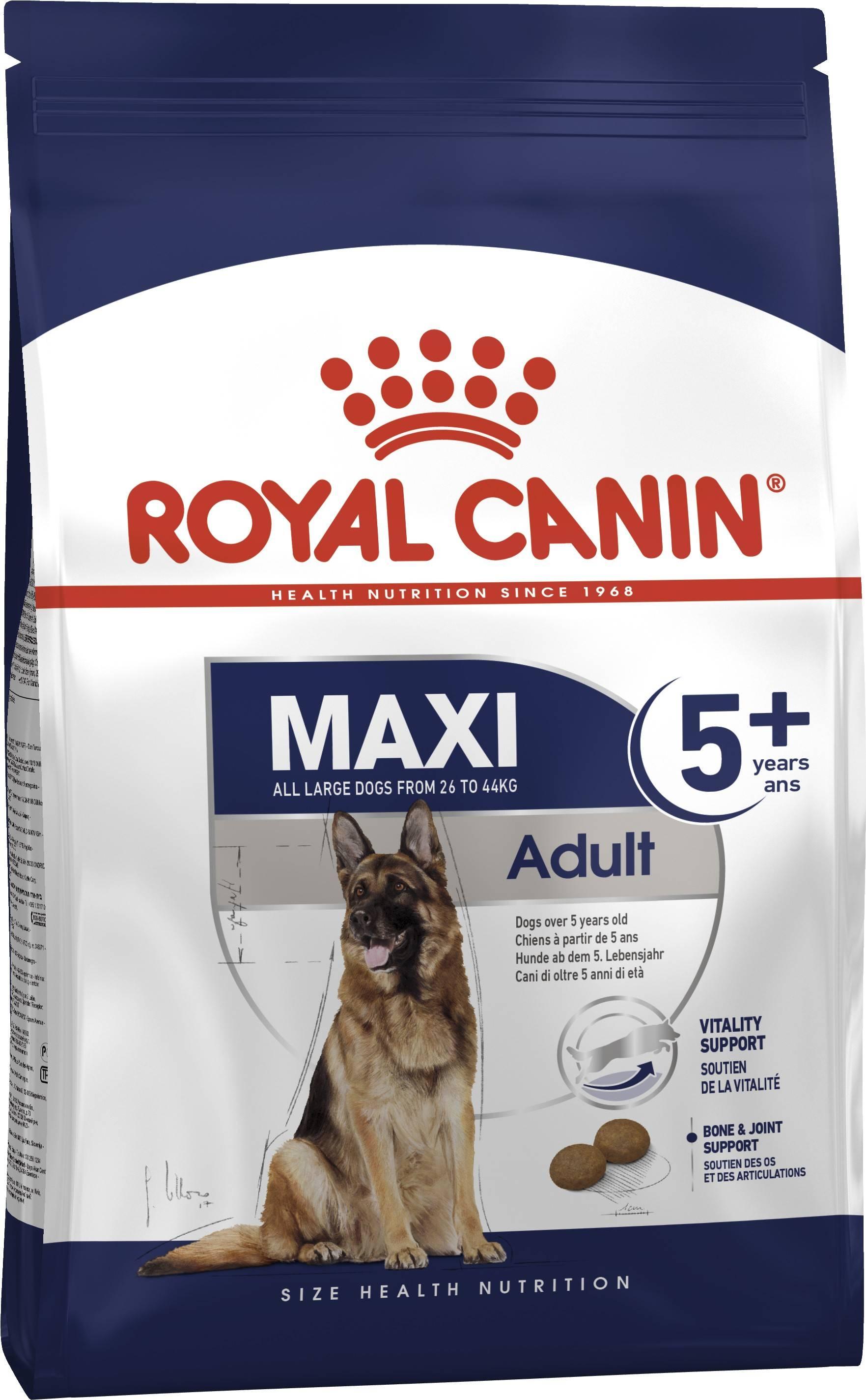 ROYAL CANIN MAXI ADULT 5+ – сухий корм для дорослих собак великих порід старше 5 років