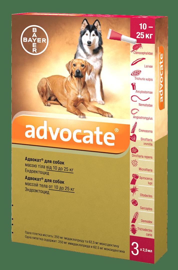 Advocate капли от паразитов для собак весом от 10 кг до 25 кг