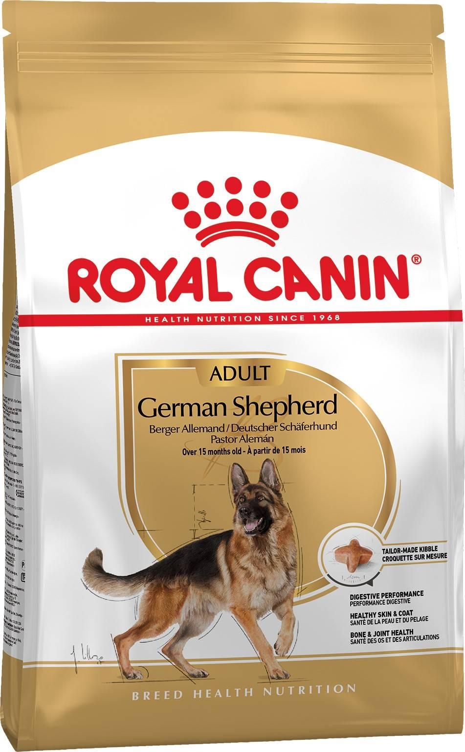 ROYAL CANIN GERMAN SHEPHERD ADULT – сухий корм для дорослих собак породи німецька овчарка
