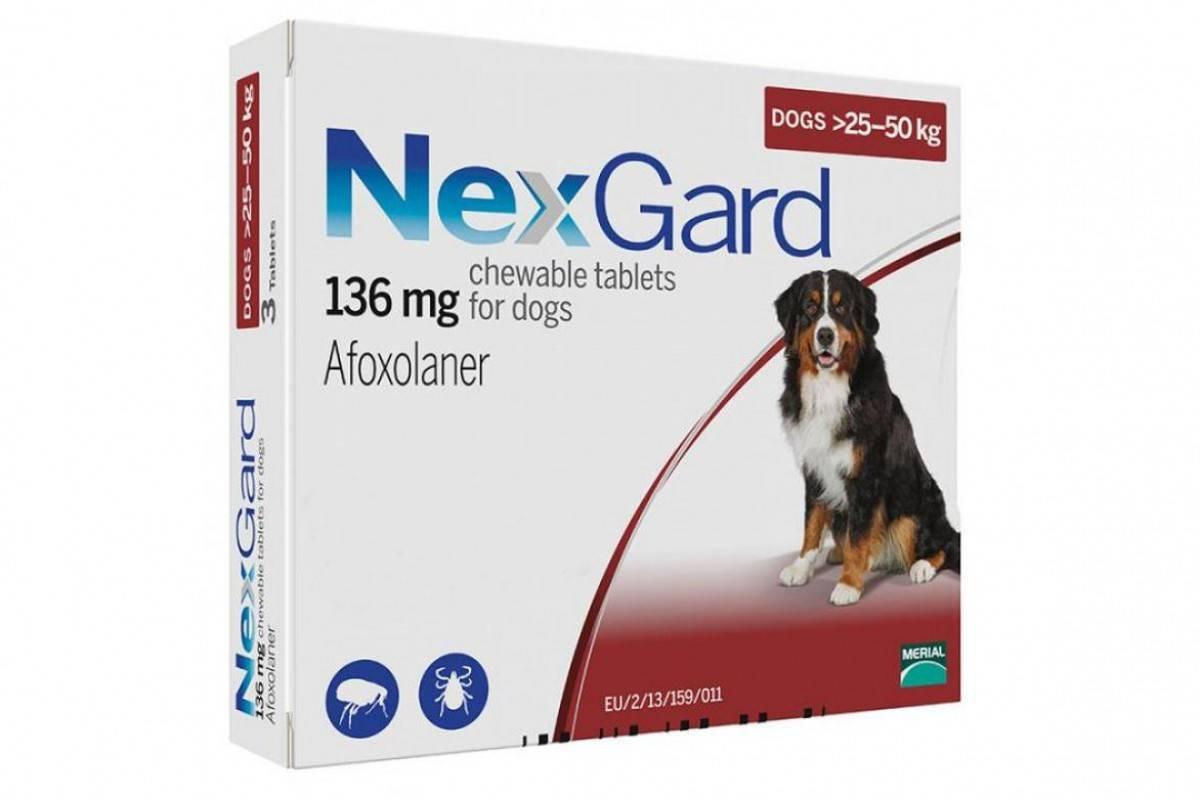 NEXGARD таблетки от блох и клещей для собак весом от 25 кг до 50 кг