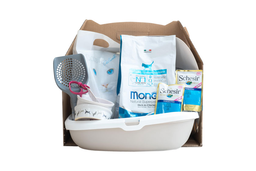 Monge Kitten – Стартовый набор для котят