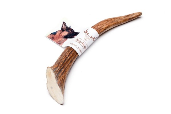DogsRogs Hard L – твёрдые рога оленя для собак больших и гигантских пород