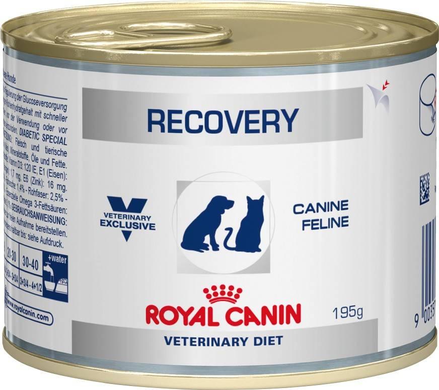 ROYAL CANIN RECOVERY – лікувальний вологий корм для собак і кішок при анорексії або в період відновлення після хвороби