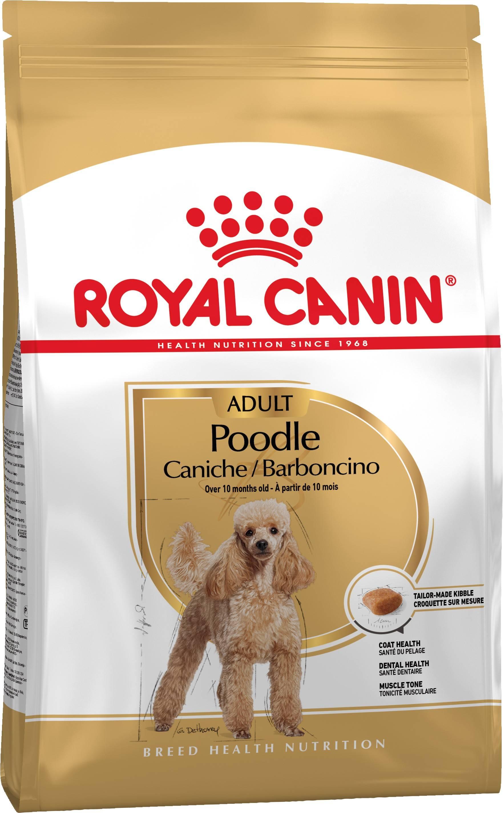 ROYAL CANIN POODLE ADULT – сухой корм для взрослых собак породы пудель