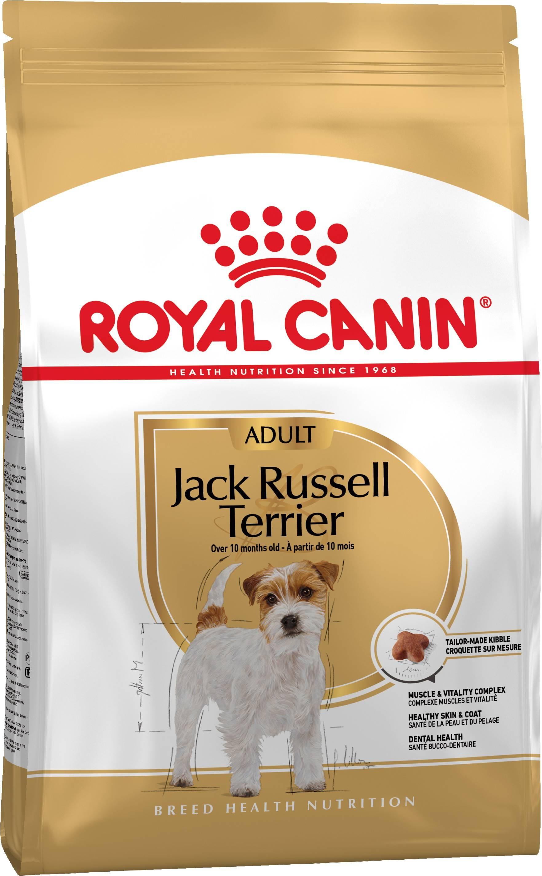 ROYAL CANIN JACK RUSSELL TERRIER ADULT – сухой корм для взрослых собак породы джек-рассел-терьер