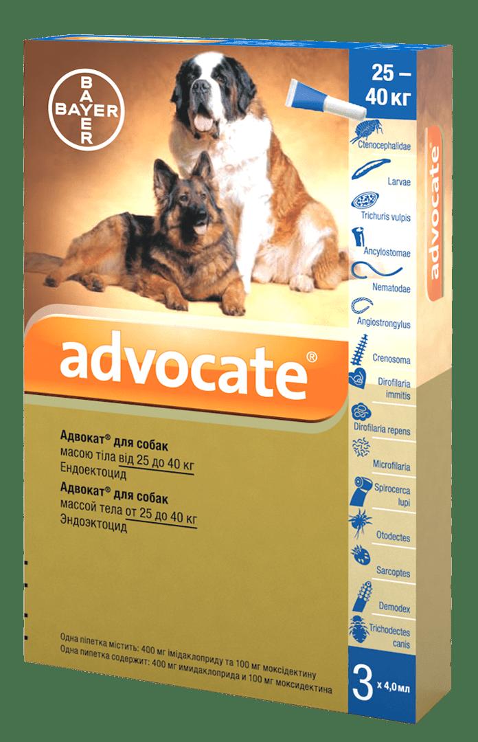 Advocate капли от  паразитов для собак весом от 25 кг до 40 кг
