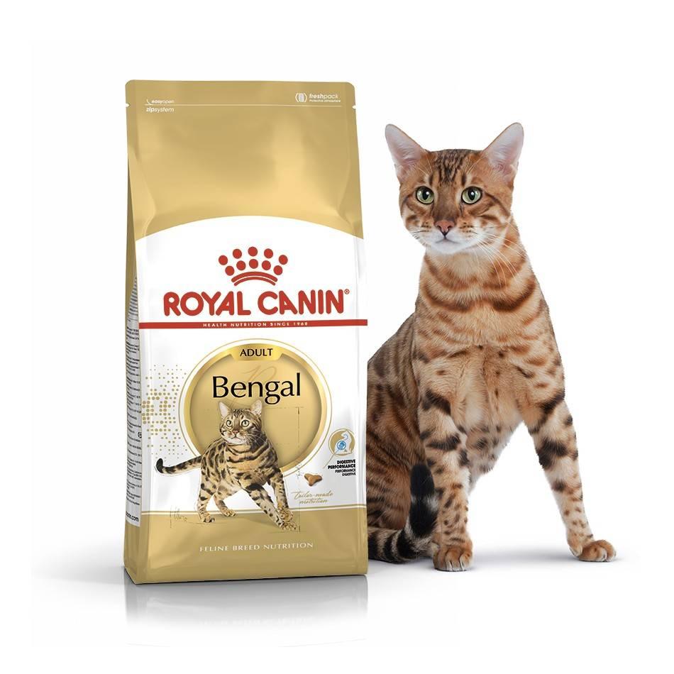 ROYAL CANIN BENGAL ADULT – сухой корм для взрослых котов породы бенгальская