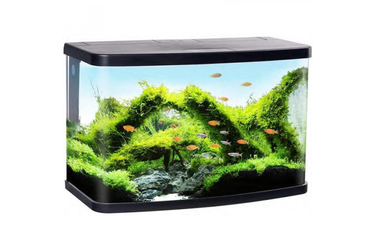 Resun Vision – аквариум