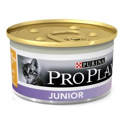 PRO PLAN JUNIOR – вологий корм для кошенят