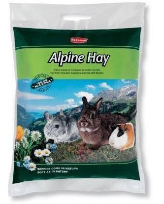 Padovan Alpine-Hay – альпийское сено для грызунов