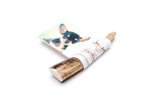 DogsRogs Soft S – мягкие рога оленя для собак малых пород