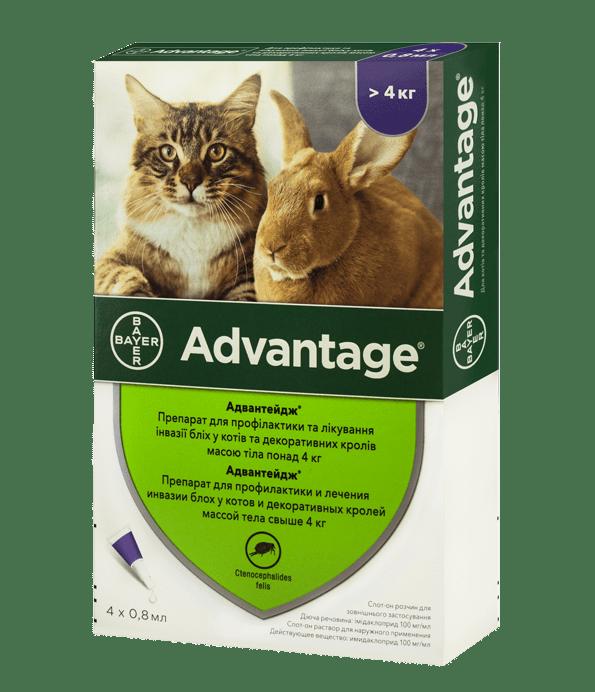 Advantage – краплі від бліх для котів і декоративних кроликів вагою масою від 4 кг