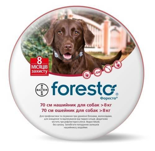 Bayer Foresto ошейник для собак для защиты от блох, вшей, власоедов, иксодовых клещей