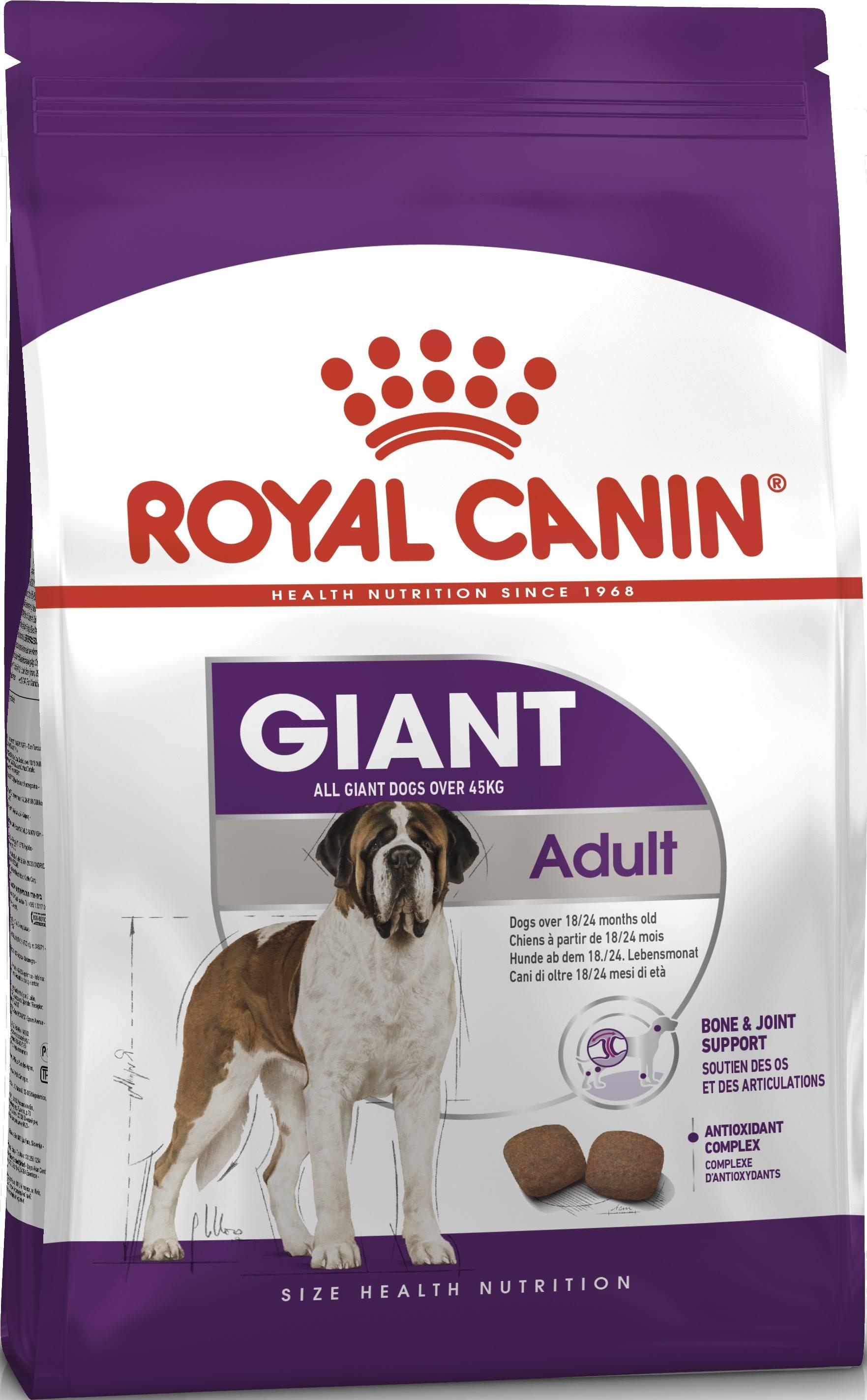 ROYAL CANIN GIANT ADULT – сухий корм для дорослих собак гігантських порід