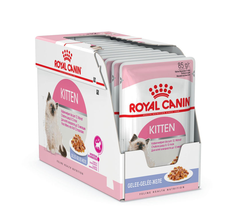 ROYAL CANIN KITTEN wet in jelly – влажный корм для котят