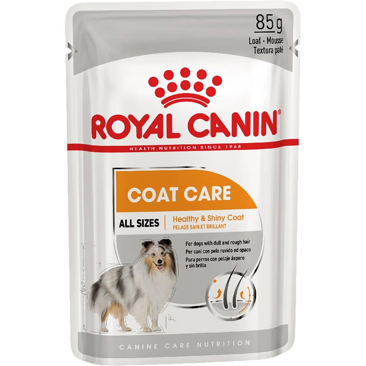 ROYAL CANIN COAT CARE MINI – вологий корм для собак з тьмяною і жорсткою шерстю