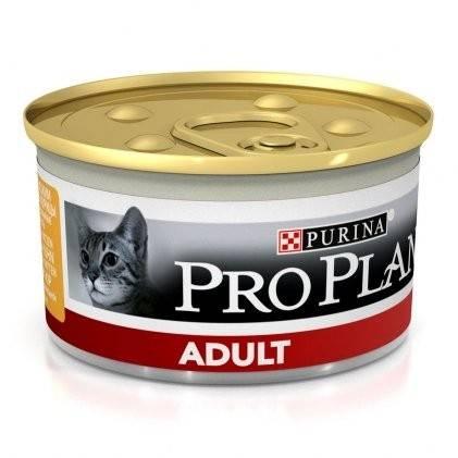 PURINA PRO PLAN ADULT – консерва для взрослых котов