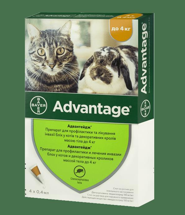 Advantage – краплі від бліх для котів і декоративних кроликів вагою масою до 4 кг