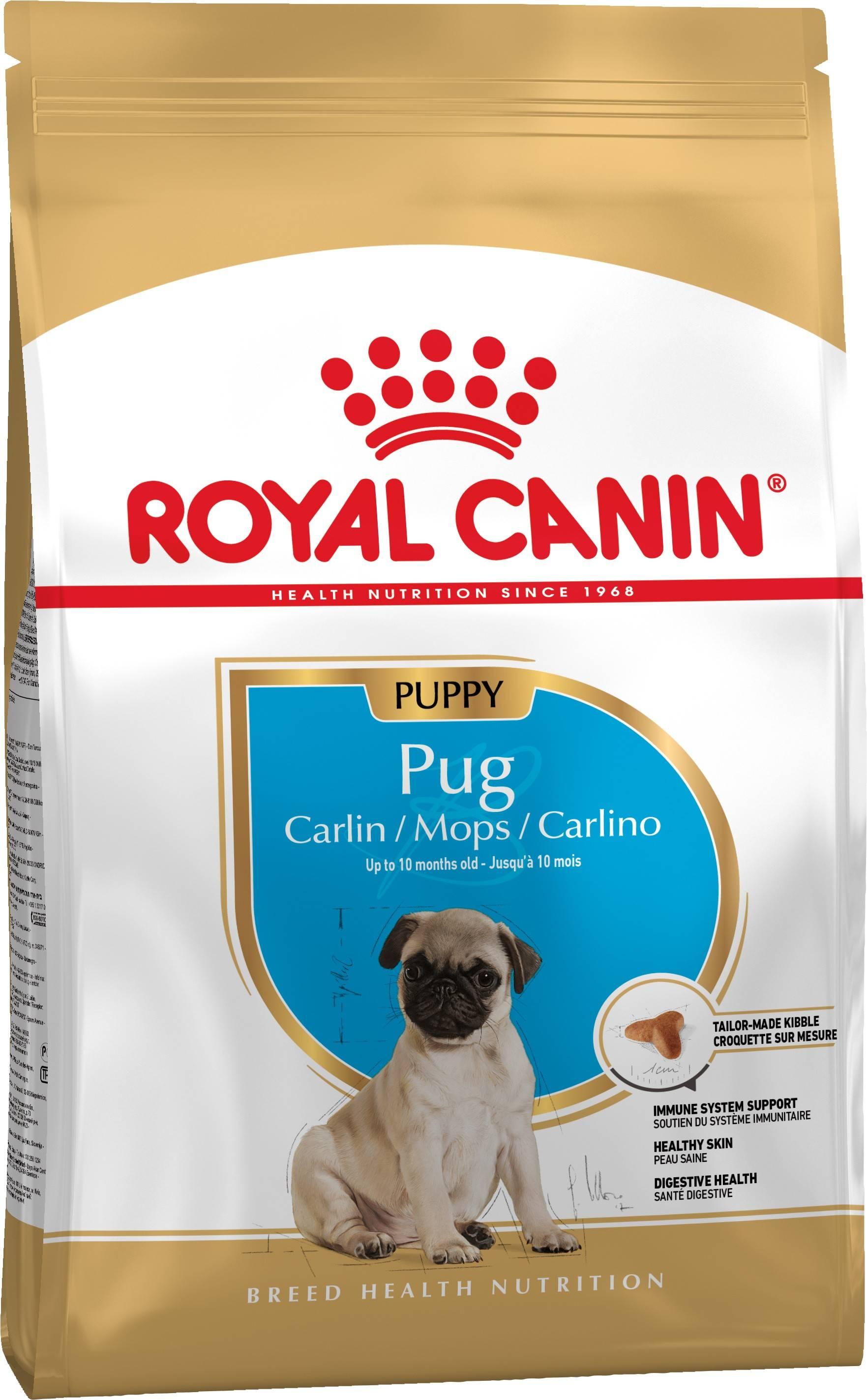 ROYAL CANIN PUG PUPPY – сухий корм для цуценят породи мопс