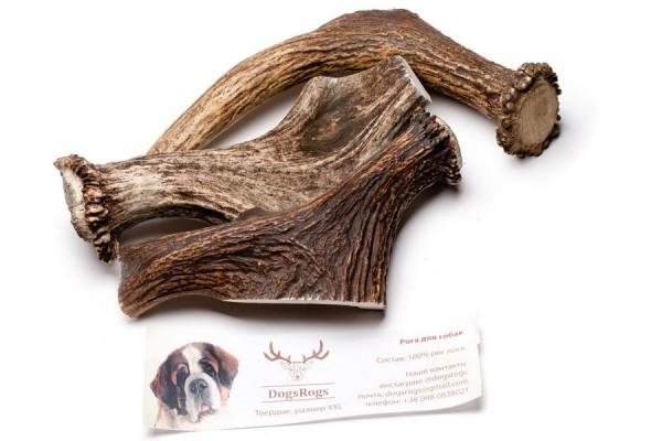 DogsRogs Hard XXL – тверді роги оленя (товсті) для собак великих та гігантських порід