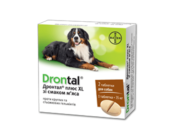 Drontal XL – таблетки со вкусом мяса для лечения и профилактики гельминтов у собак крупных пород