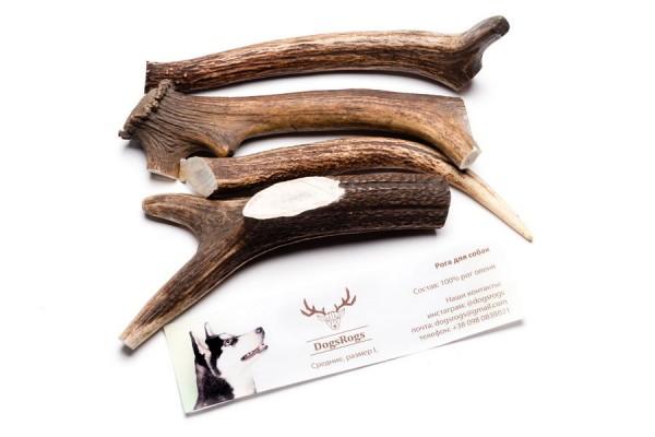DogsRogs Semi L – роги оленя середньої твердості (товсті) для собак середніх порід