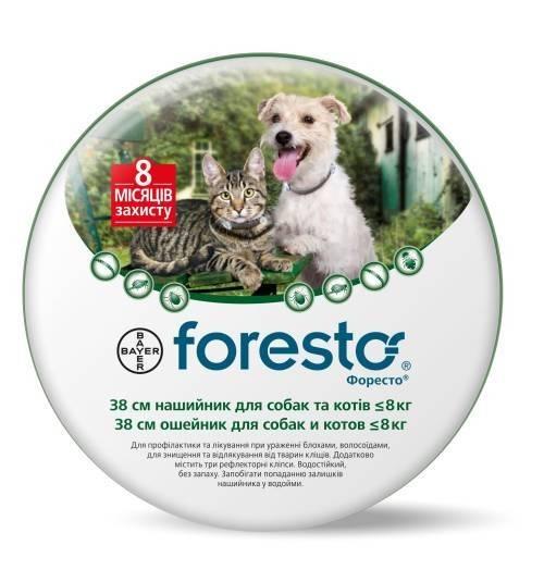 Bayer Foresto ошейник для защиты от блох, вшей, власоедов, иксодовых клещей для котов и собак до 8 кг